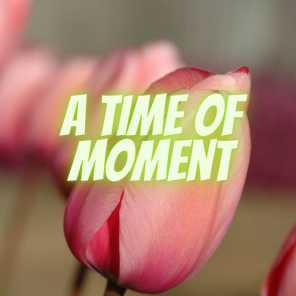 A Time Of Moment