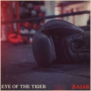 Eye Of The Tiger (Acoustic)