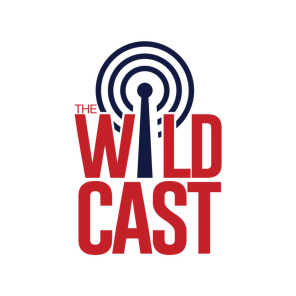 The Wildcast, Episode 340: Weighing the pros and cons of Arizona's two-QB approach vs. BYU