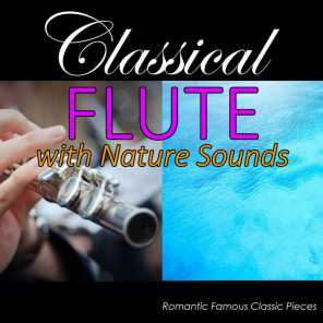 Flute Sonata in E-Flat Major, BVW 1031: II. Siciliano (With Ocean Sounds)