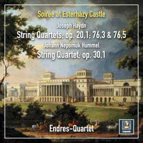 "String Quartet in E-Flat Major, Op. 20 No. 1, Hob. III:31 ""Sun Quartet No. 1"": I. Allegro moderato"