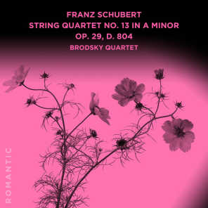 String Quartet No. 13 in A Minor Op. 29, D. 804: III. Menuetto. Allegretto