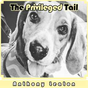 The Privileged Tail