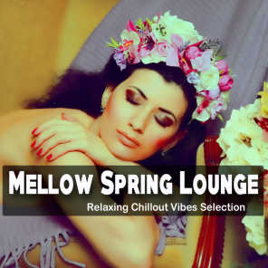 Mellow Spring Lounge (Relaxing Chillout Vibes Selection)
