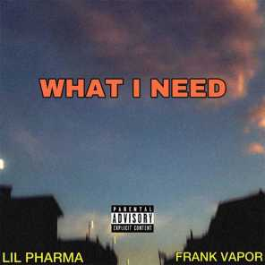 All I Need (feat. Frank Vapor)