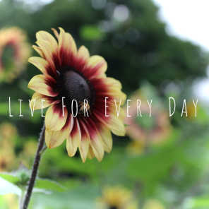 Live for Every Day