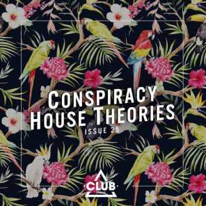 Conspiracy House Theories, Issue 25