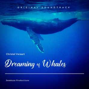 Dreaming of Whales