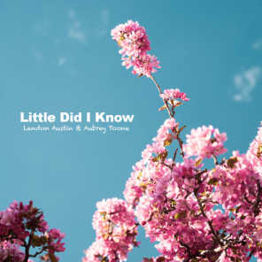 Little Did I Know (Acoustic)