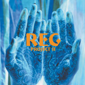 The Reg Project 2
