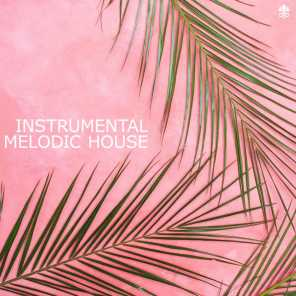 Instrumental Melodic House