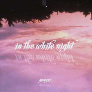 In The White Night (Orchestral Version)