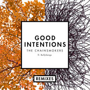 Good Intentions (Remixes) [feat. BullySongs]