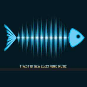 Finest of New Electronic Music