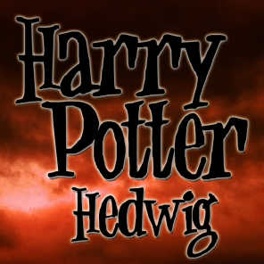 Harry Potter - Hedwig's Theme