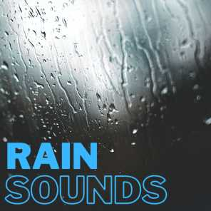Urban Rain - 2 Hours for Meditation, Studying, & Relaxation
