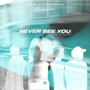 Never See You (feat. Liam Sturgess)
