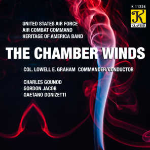 Sinfonia for Winds in G Minor, A. 509