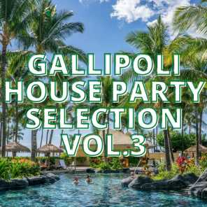 Gallipoli House Party Selection Vol.3