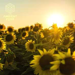 Summer Chill 001 : The Ambient Zone
