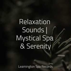 Relaxation Sounds | Mystical Spa & Serenity