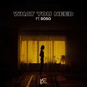 What You Need (feat. Soso)