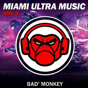 Miami Ultra Music Vol.3, Compiled By Bad Monkey