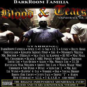 Blood and Tears Soundtrack Vol 2