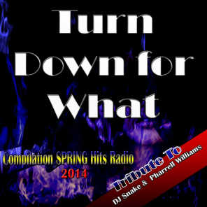 Turn Down for What: Tribute to DJ Snake & Pharrell Williams (Compilation Spring Hits Radio 2014)