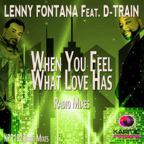 When You Feel What Love Has (Radio Mixes)