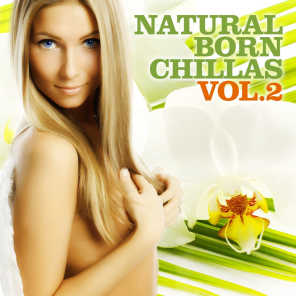 Natural Born Chillas, Vol. 2 (The Ultimate Lounge & Chill Out Experience)