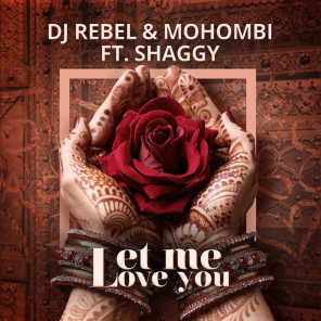 Let Me Love You (feat. Shaggy)