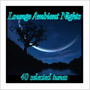 Lounge Ambient Nights (40 Selected Tunes)