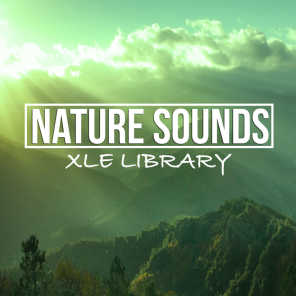 Nature Sound Library