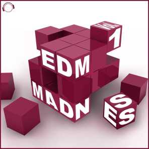 EDM Madness, Vol. 1