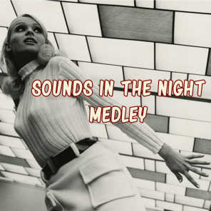 Sounds in the Night Medley: Sounds in the Night / Harlem Nocturne / Cry Me a River / Yesterdays / Blue Twilight / Summertime / Alone Together / Moon Nocturne / Blue Prelude / Feelin' the Blues / Warm Valley / Alone with the Blues