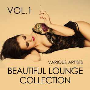 Beautiful Lounge Collection, Vol. 1