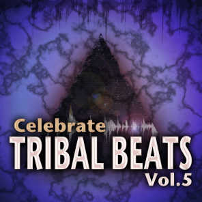 Celebrate Tribal Beats, Vol. 5 - Collection from Progressive to Tech House With Jazzy Latin Tribal Influences