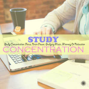 Study Concentration: Focus, Brain Power, Studying Music, Memory & Relaxation