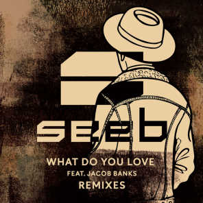 What Do You Love (Gramercy Remix) [feat. Jacob Banks]