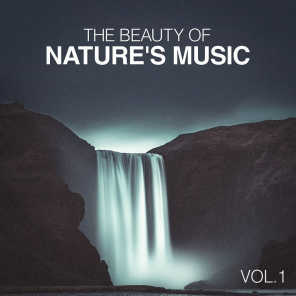 The Beauty of Nature's Music