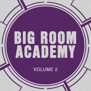 Big Room Academy, Vol. 2