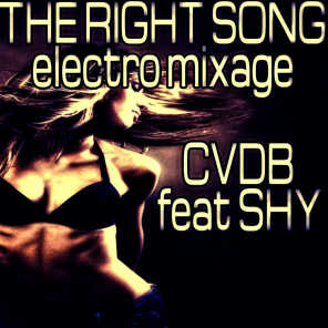 The Right Song (Electro Mixage)