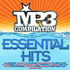 Mp3 Compilation Essential Hits