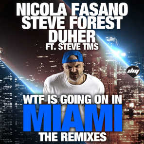 Wtf is Going on in Miami (The Remixes)