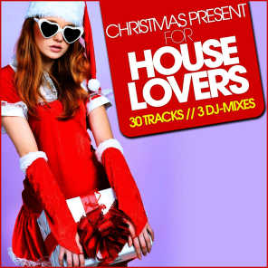 Christmas Present for House Lovers