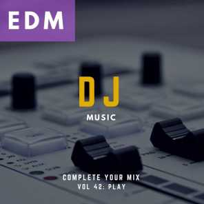 DJ Music - Complete Your Mix, Vol. 42