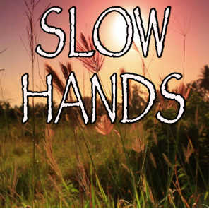 Slow Hands - Tribute to Niall Horan
