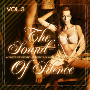 The Sound of Silence, Vol. 3 - A Taste of Exotic Ambient Lounge and Erotic Chill Out