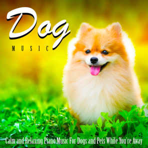 Dog Music: Calm and Relaxing Piano Music for Dogs and Pets While You're Away